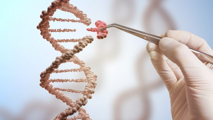 A research team led by the University of Pennsylvania has used gene editing to prevent a fatal disorder in laboratory animals.