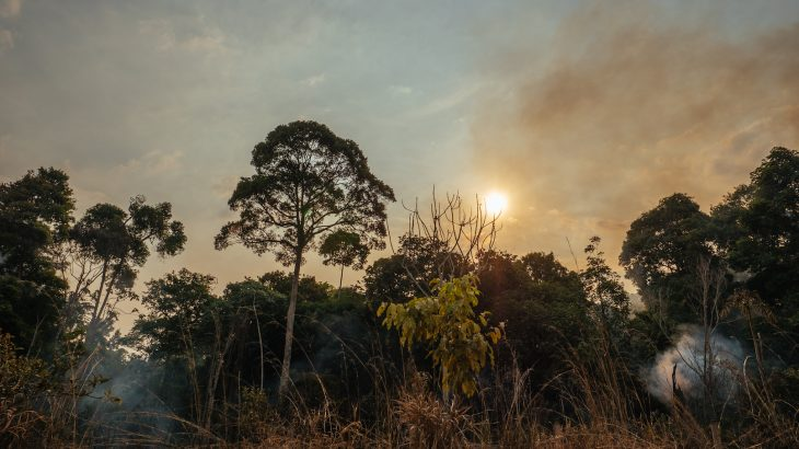 Forest fires fueled by El Niño may have resulted in three or four times greater carbon losses than previously realized.