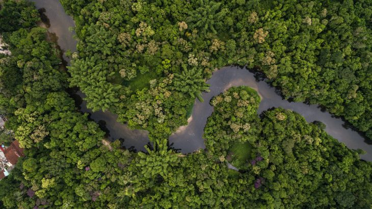 The Amazon rainforest has a dark history of exploitation and violence, especially when it comes to its indigenous population.