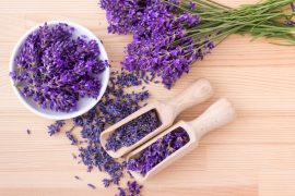 A new study has demonstrated for the first time that the calming effect of lavender could be used to treat anxiety.