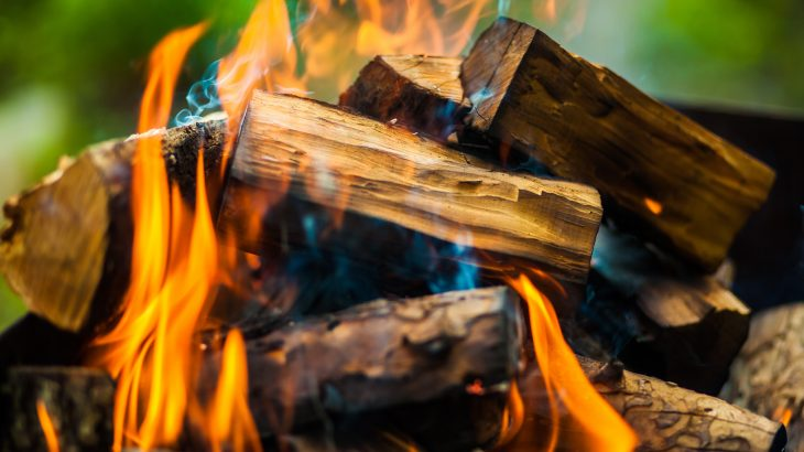 According to new study, the effects of wood smoke on the respiratory immune systems of men and women can differ.