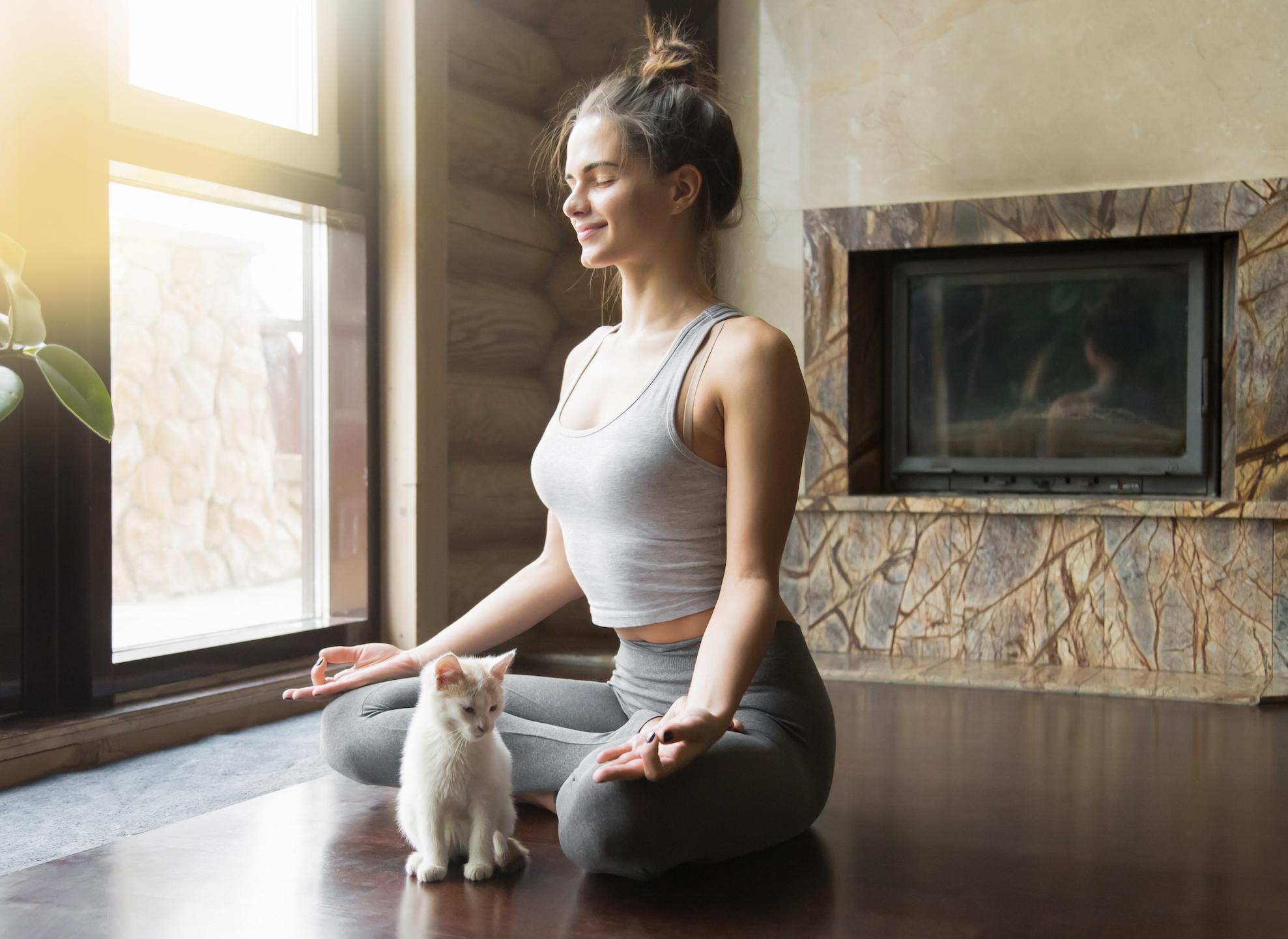 McLean Meditation Institute