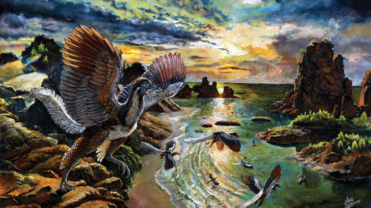These creatures, which had teeth and clawed fingers, served as an evolutionary transition point between dinosaurs and birds.