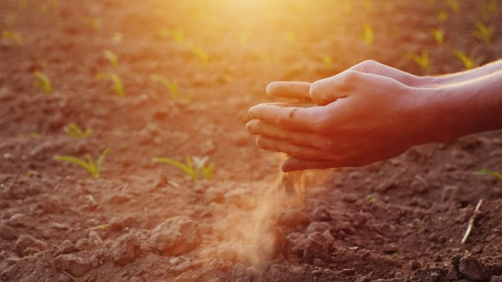 A new study shows that some soil bacteria are primed to eat nitrous oxide even in soil where oxygen levels are plentiful.