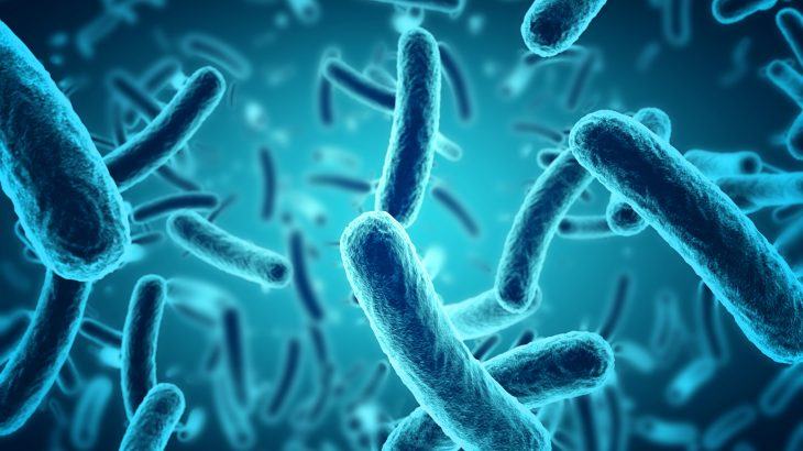 A new study has found that we hosts starve our microbial benefactors of nutrients, basically enslaving the microbes within our gut.