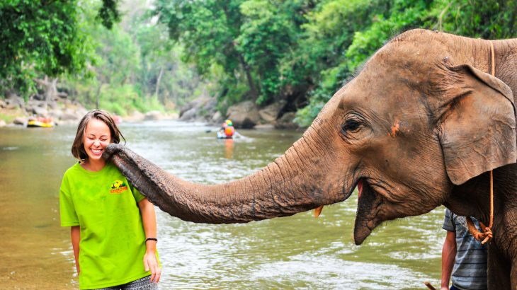 A new poll shows a meaningful shift in the way travelers view inhumane animal activities such as elephant rides and animal selfies.