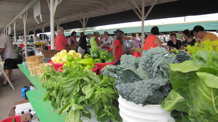 Many farmers market vendors are not taking adequate precautions to prevent the spread of food-borne illness.
