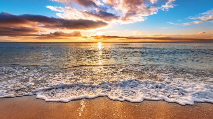 The Earth's oceans have absorbed 60 percent more heat from carbon emissions than was previously realized, according to new research.