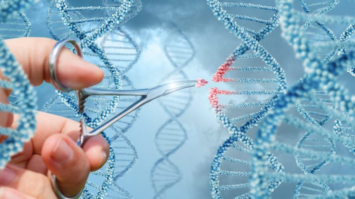 In a new report, a team of scientists argue that gene editing will require global governance and strict regulations.
