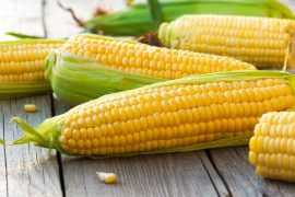 Corn production in the midwest has been booming, and new research shows that climate change has played a significant role.