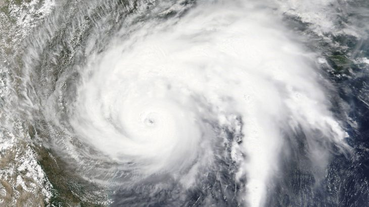 Huge hurricanes that have hit the Gulf Coast in recent years as a result of climate change have not altered life within the waters.
