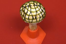 In order to create environmentally friendly energy, researchers have engineered bionic mushrooms that are capable of producing electricity.