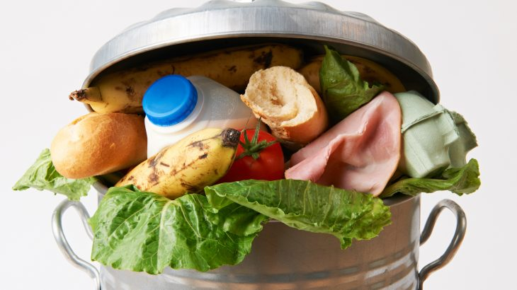According to the United States Department of Agriculture (USDA), unused food makes up 30 to 40 percent of the food supply in the US.