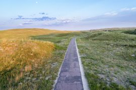 What is Sandhills (Nebraska)?
