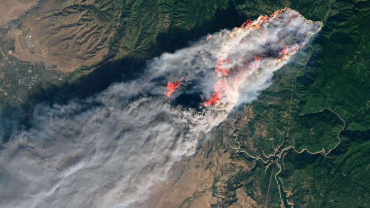 Despite Trump's callus criticisms, almost 60% of California's forests are under the oversight of the federal government.