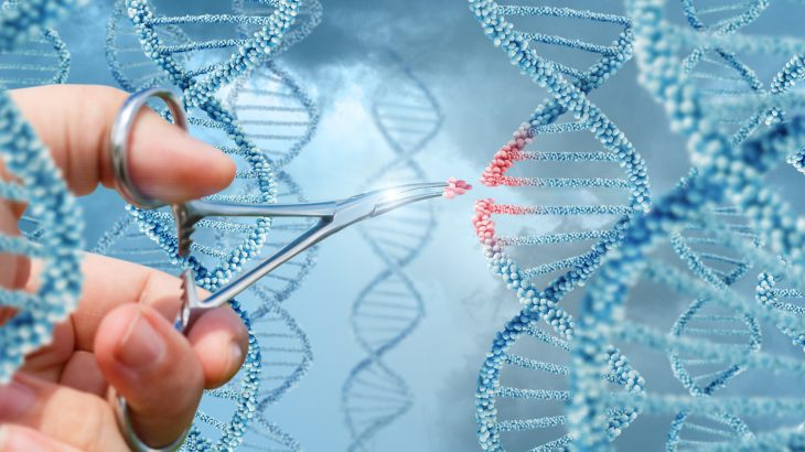 A Chinese scientist has announced that he genetically modified the DNA of twin babies to give the babies resistance to HIV.