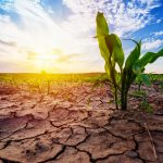A new study from Stanford University has found that hot and dry conditions are becoming more common as a result of global warming.