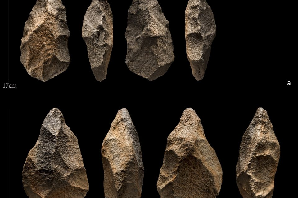 New research reveals that a grouping of stone hand axes made by ancient humans in the Arabian Peninsula date back less than 190,000 years.