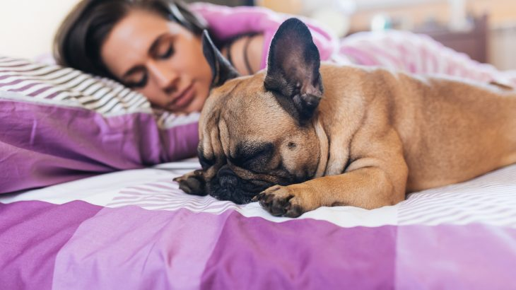 According to a new study, women actually get better sleep laying beside their dogs than they do when they sleep next to their human partners.
