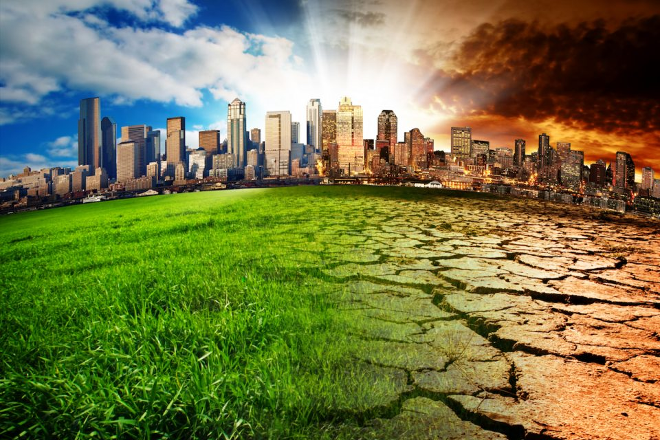 """Climate change will greatly increase the risk of an """"extinction domino effect"""" that could ultimately wipe out every species on our planet."""