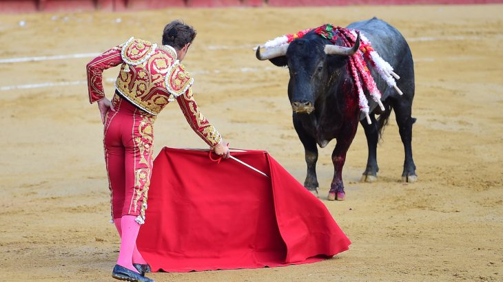 A 2015 Ipsos MORI poll found that only 19% of Spaniards stated they supported bullfighting, while two-thirds are not proud of the tradition.