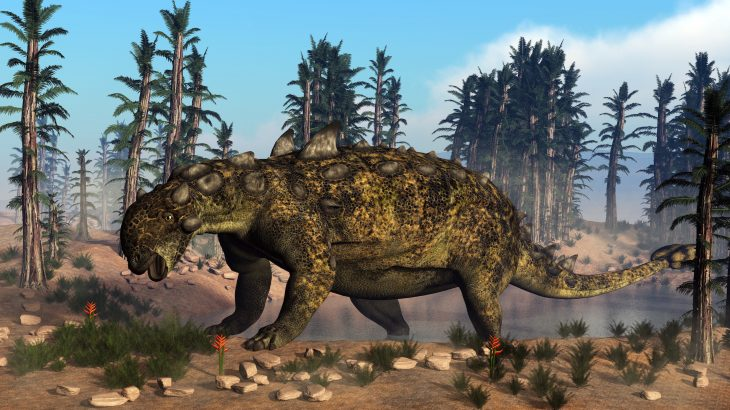 Ankylosaurs, a group of club-tailed dinosaurs, had built-in air conditioning thanks to their twisty nasal passages, according to a new study.