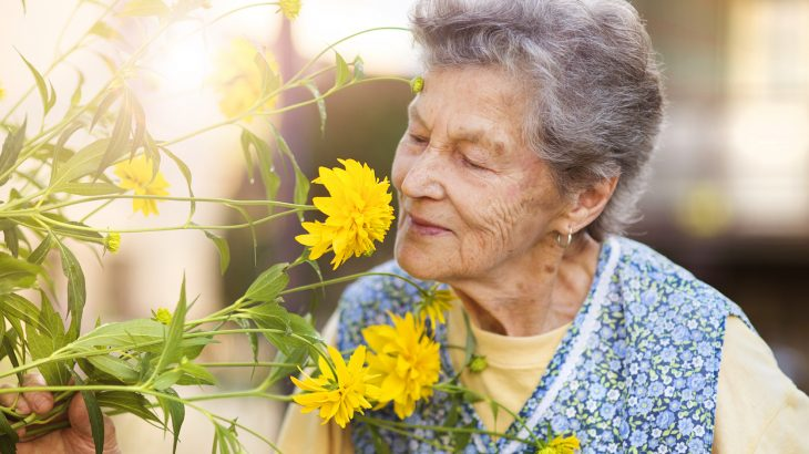As we age, we begin to lose our sense of smell, and we can't always pick up on odors as strongly as we could in our youth.
