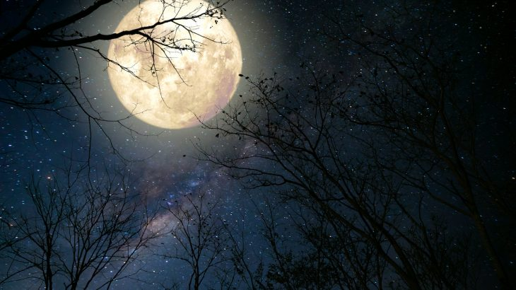 Tonight's Solstice will include both a full moon and a meteor shower, making it a particularly special evening.