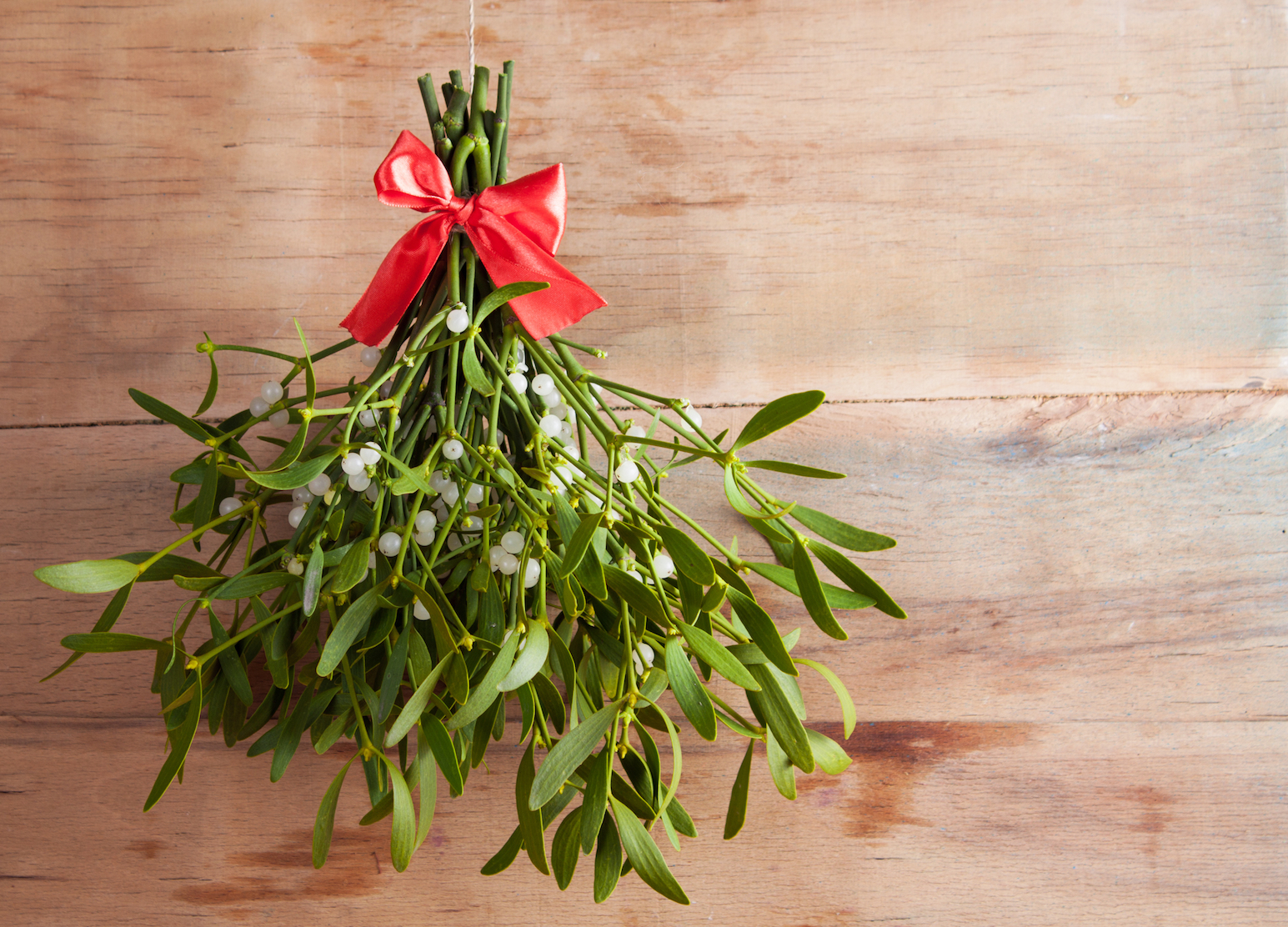 How Mistletoe Became An Icon Of Christmas Earth Com