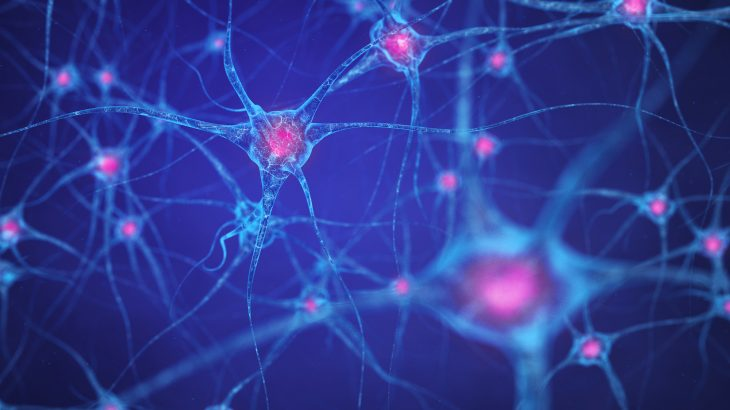 Scientists have demonstrated for the first time that neuronal cell death in Alzheimer's disease (AD) may not be a bad thing.