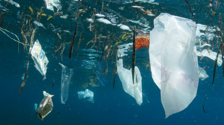 Plastic makes up more than two-thirds of ocean trash, a new study of garbage in the Gulf of Mexico found.