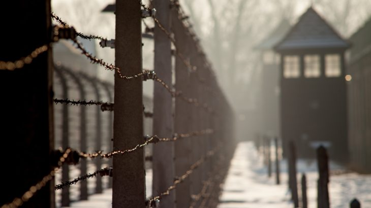 A quarter of all Holocaust murders occurred within a single three-month period during the murder campaign, Operation Reinhard.