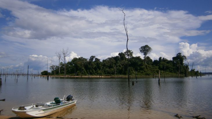 Experts are warning that mega-dams are too damaging to ecosystems and biodiversity in lowland tropical forest regions.