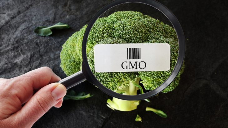 Those who are the most opposed to genetically modified foods believe they know the most about GM food science, but actually know the least.