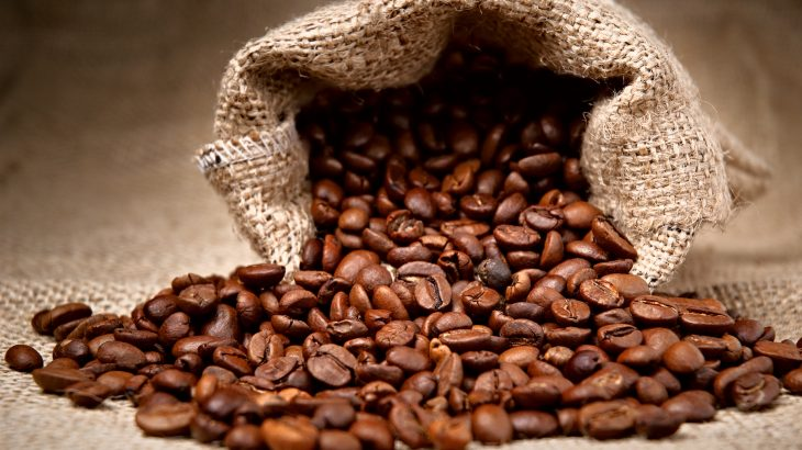 A new study has revealed that dozens of species of wild coffee are at risk of vanishing as a result of climate change and deforestation.