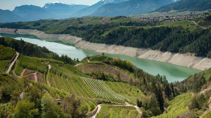 A new study has revealed that the growing popularity of Prosecco may come along with a high environmental cost.