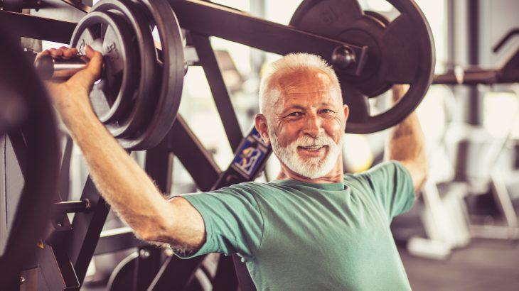 A new study has revealed that the cell control centers which regulate the development of muscle fibers persist even when our muscles shrink.