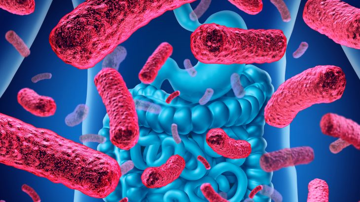 According to the researchers leading the Flemish Gut Flora Project, gut flora imbalances are linked to depression.