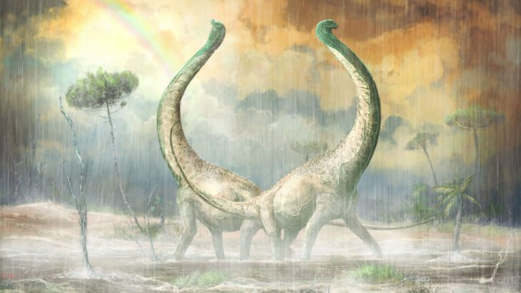 This new dinosaur, which sported a heart-shaped tail, provides new insight into how African ecosystems evolved during the Cretaceous period.