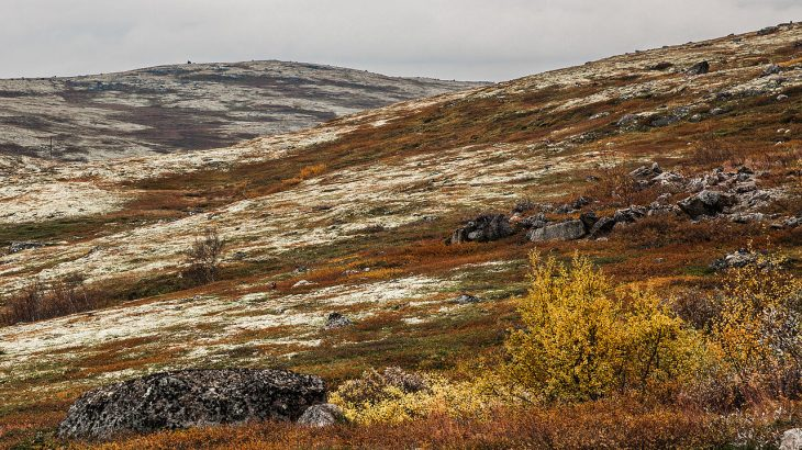 Photo of tundra showing redish hills with patches of white snow and a cloudy sky in the background.
