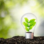 A look at the development of technology to use plants for the generation (or capture) of electricity... and the ethical dilemmas that follow.