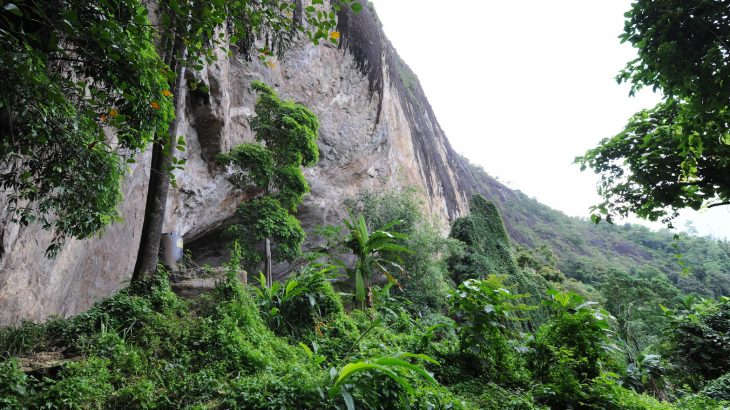A team of researchers has found that humans hunted small mammals such as primates in the forests of Sri Lanka at least 45,000 years ago.