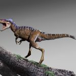 The small tyrannosaur, Moros intrepidus, narrows a 70-million-year gap in the fossil record and sheds new light on how T. rex took control of the continent.
