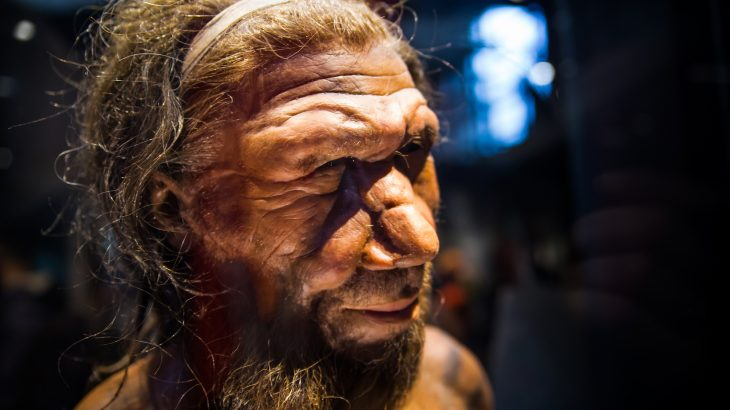 Researchers at the University of Zurich (UZH) have discovered that Neanderthals walked upright just like modern humans.