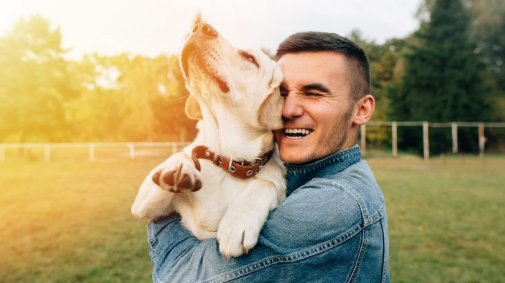 Researchers at Michigan State University have discovered that dogs often take on the same personality traits as their owner.