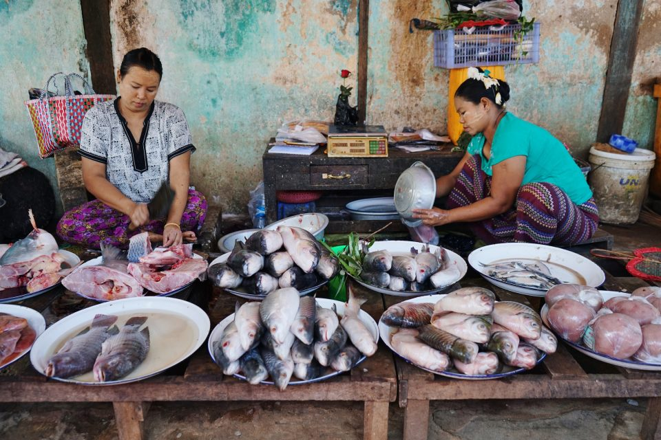 Limiting global warming to 1.5 degrees Celsius would protect millions of tons of fish caught by fisheries and billions of dollars in annual revenues.