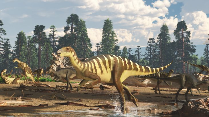 A new species of small dinosaurs has been described based on the discovery of five fossilized upper jaws in the Gippsland region of southeastern Australia.