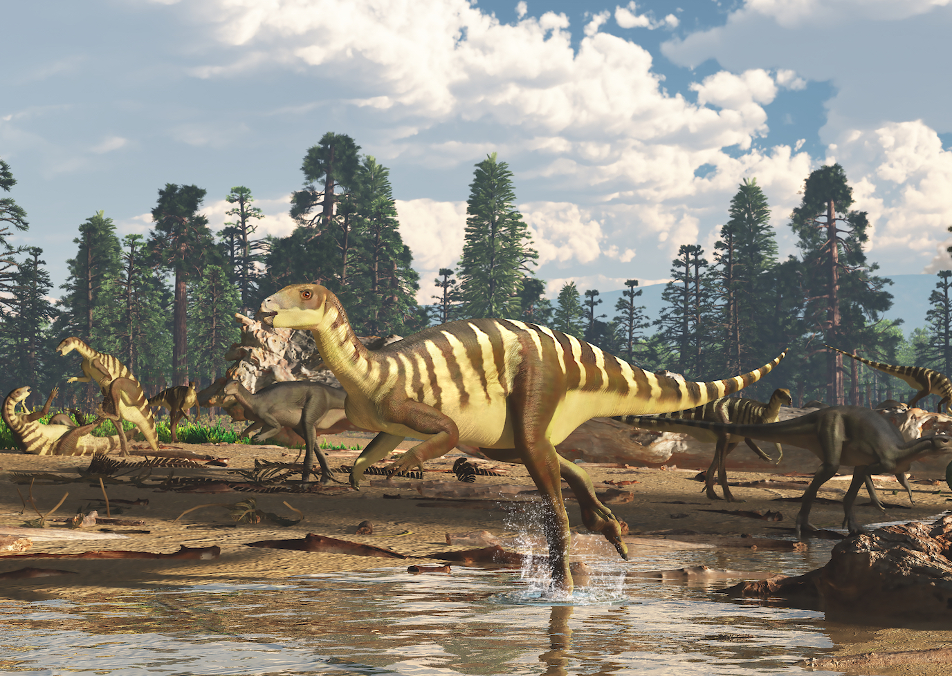 New small dinosaur species discovered in southeastern ...