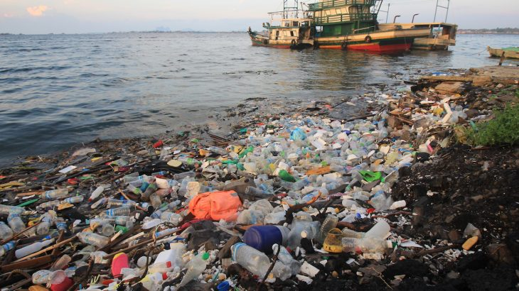 25 percent of global disease and mortality is caused by environmental damage, and plastic pollution is one of the biggest growing threats.