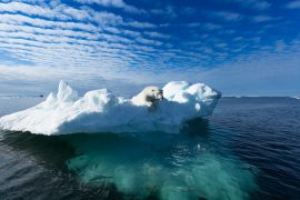 A new UN report shows that limiting CO2 emissions per the Paris Climate Agreement will not be enough to prevent warming in the Arctic.